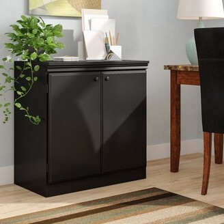 Andover Mills Caines 2 Door Accent Cabinet Color: Pure Black
