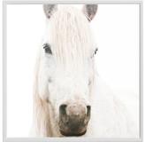 Pottery Barn White on White Horse Framed Print by Jennifer Meyers