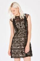 Parker Rosewell Dress