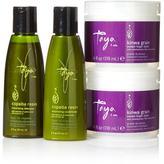 Taya Kinwa Grain Styler Duo with Travel-Sized Copaiba Shampoo and Conditioner