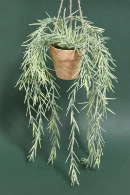 Urban Outfitters Faux Hanging Willow Plant - Assorted ALL at