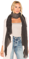 Michael Stars Crinkled Ombre Scarf in Black.