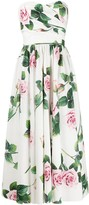 Dolce & Gabbana rose print long dress