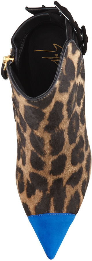 Giuseppe Zanotti Calf Hair Cap-Toe 3-Strap Bootie, Leopard/Blue