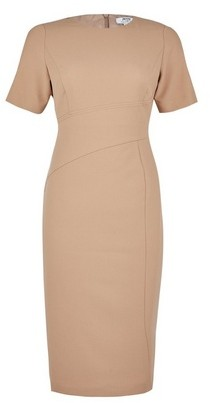 Dorothy Perkins Womens Dp Petite Camel Contour Seam Pencil Dress