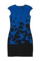 McQ by Alexander McQueen Fade Swallow Dress