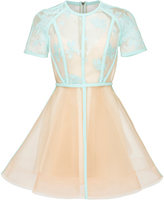 Alex Perry Arley Mini Dress