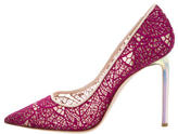 Giambattista Valli Mesh Pointed-Toe Pumps