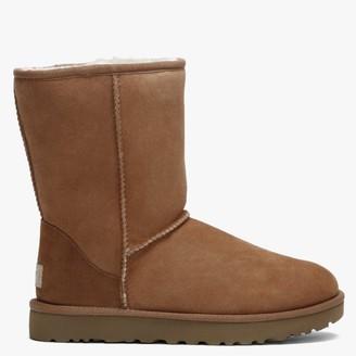 UGG Classic Short II Chestnut Twinface Boots