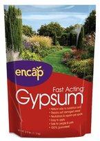 ENCAP LLC - Gypsum, 2.5-Lb., 400 Sq. Ft.