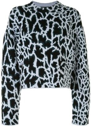 Proenza Schouler Textured Giraffe Jacquard Knit Jumper