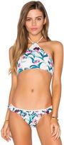 Somedays Lovin Freesia Frill Bikini Top