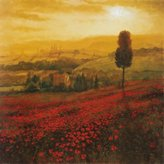 Bentley Shades of Poppies Art Poster Print by Steve Thoms, 24x24