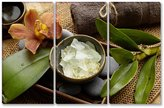 SmartWallArt@ SmartWallArt - Still Life Wall Art Decor Spa Aroma Bowl Of Salt and Orchid with Towel and Green Leaves on Mat 3 pieces Picture Print on Canvas for Modern Home Decoration