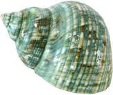 One Kings Lane Vintage Aqua Turbo Shell