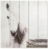 Graham & Brown Horse Wall Art