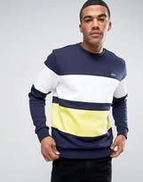 Lacoste Sweatshirt With Block Hoop In Navy