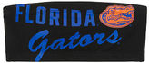 PINK University Of Florida Bandeau Bra