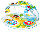 Skip Hop New Explore & More Activity Gym, Multi