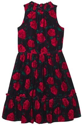 Janie and Jack Velvet Floral Print Dress (Toddler/Little Kids/Big Kids) (Multi) Girl's Dress