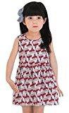 Hot Baby Dress! AMA(TM) Toddler Kids Baby Girls Flower Print Sleeveless Princess Party Tutu Dresses (2/3T, Red 1)