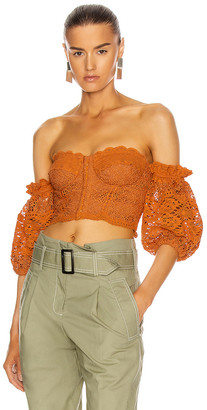 Jonathan Simkhai Leigh Puff Sleeve Bustier Top in Toffee | FWRD