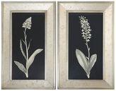 Uttermost Antique Floral Study 2-piece Framed Wall Art Set