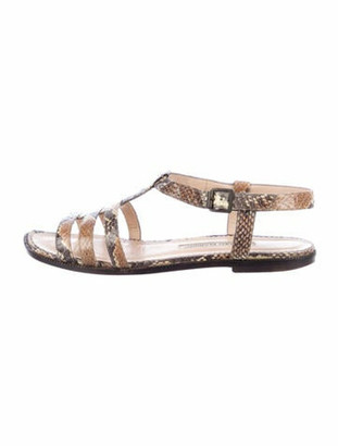 Manolo Blahnik Snakeskin Animal Print Gladiator Sandals Brown