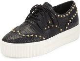 Ash Krush Studded Wing-Tip Sneaker, Black