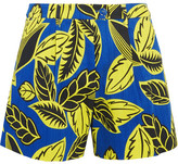 Moschino Printed Cotton-blend Shorts - Blue