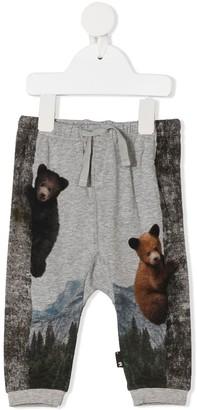Molo Teddy Bear print track trousers