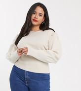 Urban Bliss Plus puff sleeve sweater