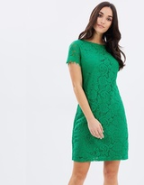 Dorothy Perkins Lace Shift