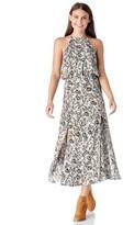 Sole Society Marceline Dress