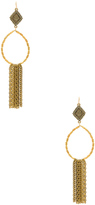 Vanessa Mooney Hailey Hoop Earrings
