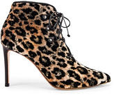 Francesco Russo Velvet Leopard Booties in Natural & Black | FWRD