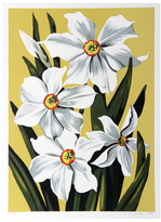 Daffodils by Lowell Blair Nesbitt (Serigraph)