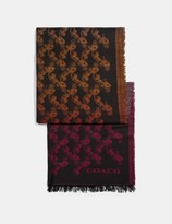 Coach Diagonal Horse And Carriage Ombre Stripe Print Scarf