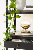Anthropologie Equator Table Lamp