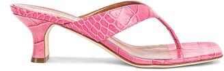 Paris Texas Moc Croco 45 Thong Sandal in Fuchsia | FWRD