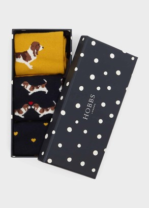 Hobbs Beagle Dog Sock Set
