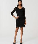 LOFT Lace V-Neck Dress