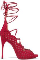 Alaia Carine laser-cut suede sandals