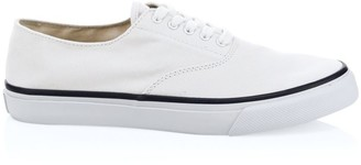 Sperry Cloud CVO Canvas Sneakers