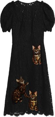 Dolce & Gabbana Appliqued Corded Lace Midi Dress