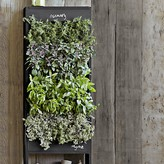Williams-Sonoma Free Standing Vertical Chalkboard Garden