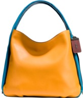 Coach Hobo in colorblock leather