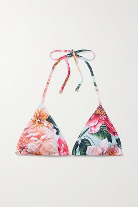 Dolce & Gabbana Floral-print Triangle Bikini Top - Pink