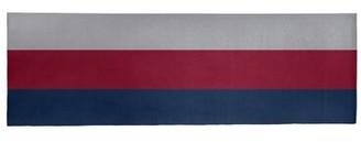 "Blue Area NHS National Hockey Stripes Polar Night Rug East Urban Home Rug Size: Runner 2'6"" x 8'"