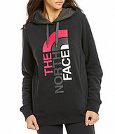 The North Face Trivert Logo Long Sleeve Solid Pullover Hoodie